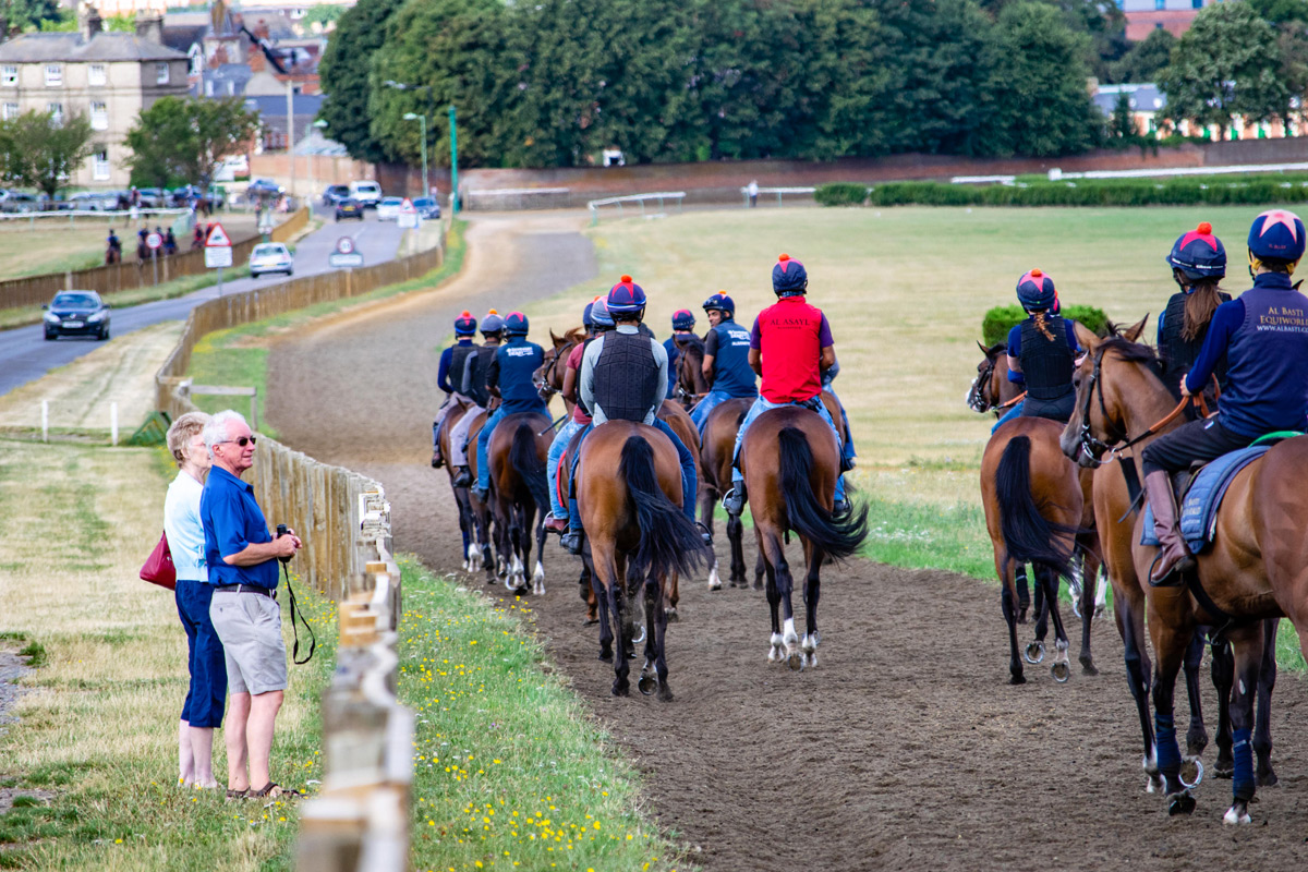 Ultimate Horse Racing Lover's Experience with Behind the Scenes Full Day Guided Tour for Two at Newmarket