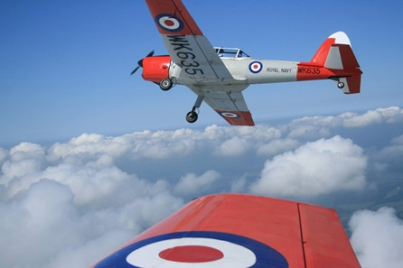 45 Minute De Havilland Chipmunk Flight