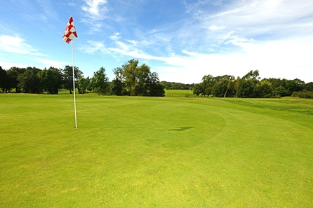 9 Hole Playing Lesson with a PGA Professional at Blacknest Golf & Country Club
