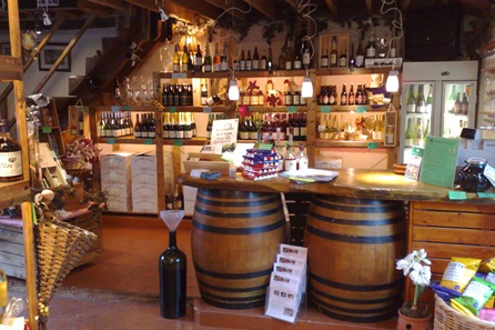 Winery and Brewery Tour for Two with Tastings
