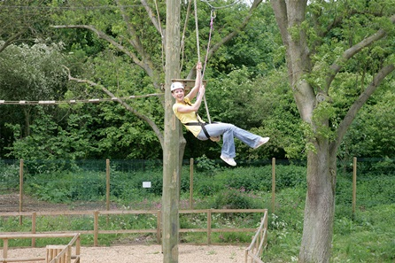 Adventure Ropes Course for Two
