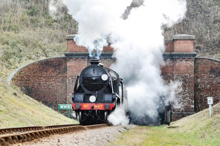 Family Bluebell Railway Steam Train Trip