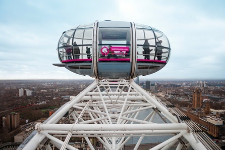 Family Visit to London Eye - Two Adults and Two Children
