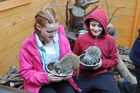 Junior Keeper at Hemsley Conservation Centre