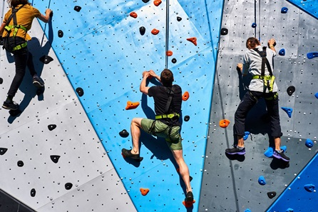 Outdoor Rock & Drop Challenge for Two at Adventure Parc Snowdonia