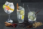 Blend your own Unique Gin with the Bespoke Gin Company