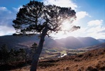 Highland Perthshire Offroad Tour for Two