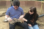 Meet the Meerkats for Two at Bridlington Animal Park