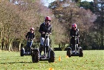 Segway safari for one