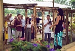 Vineyard Tour and Tasting with Cheese Platter for Two at Oastbrook Estate